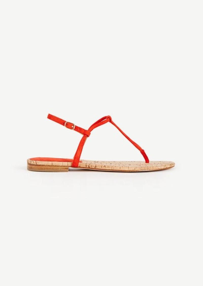 Ann Taylor Matilda Suede Thong Sandals