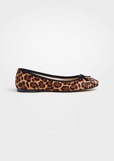 Ann Taylor Matilde Leopard Print Haircalf Bow Flats