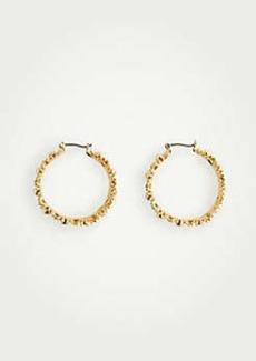 Ann Taylor Metallic Daisy Hoop Earrings