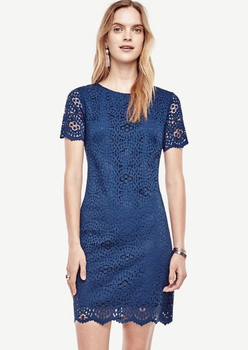 Ann Taylor Mosaic Lace Shift Dress