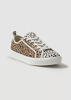 Ann Taylor Natalia Spotted Haircalf Sneakers