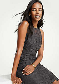 Ann Taylor Petite Butterfly Lace Sheath Dress