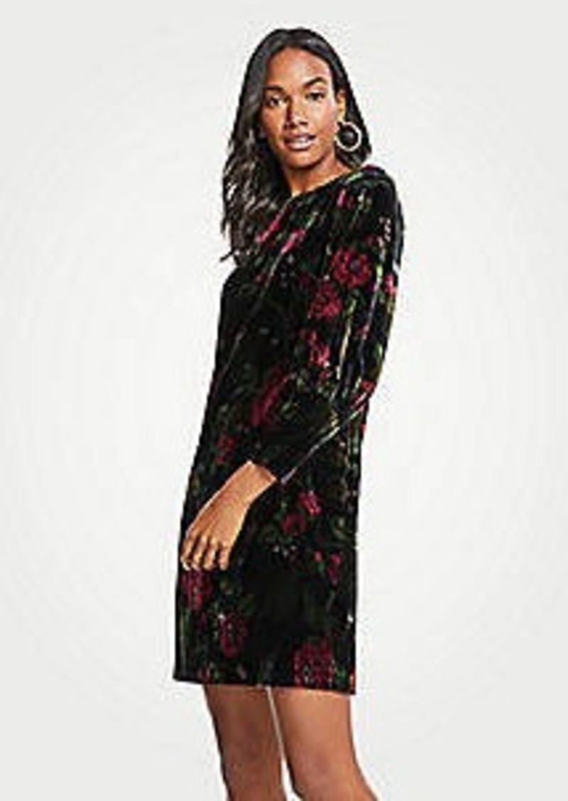 Ann Taylor Petite Cuffed Floral Velvet Shift Dress