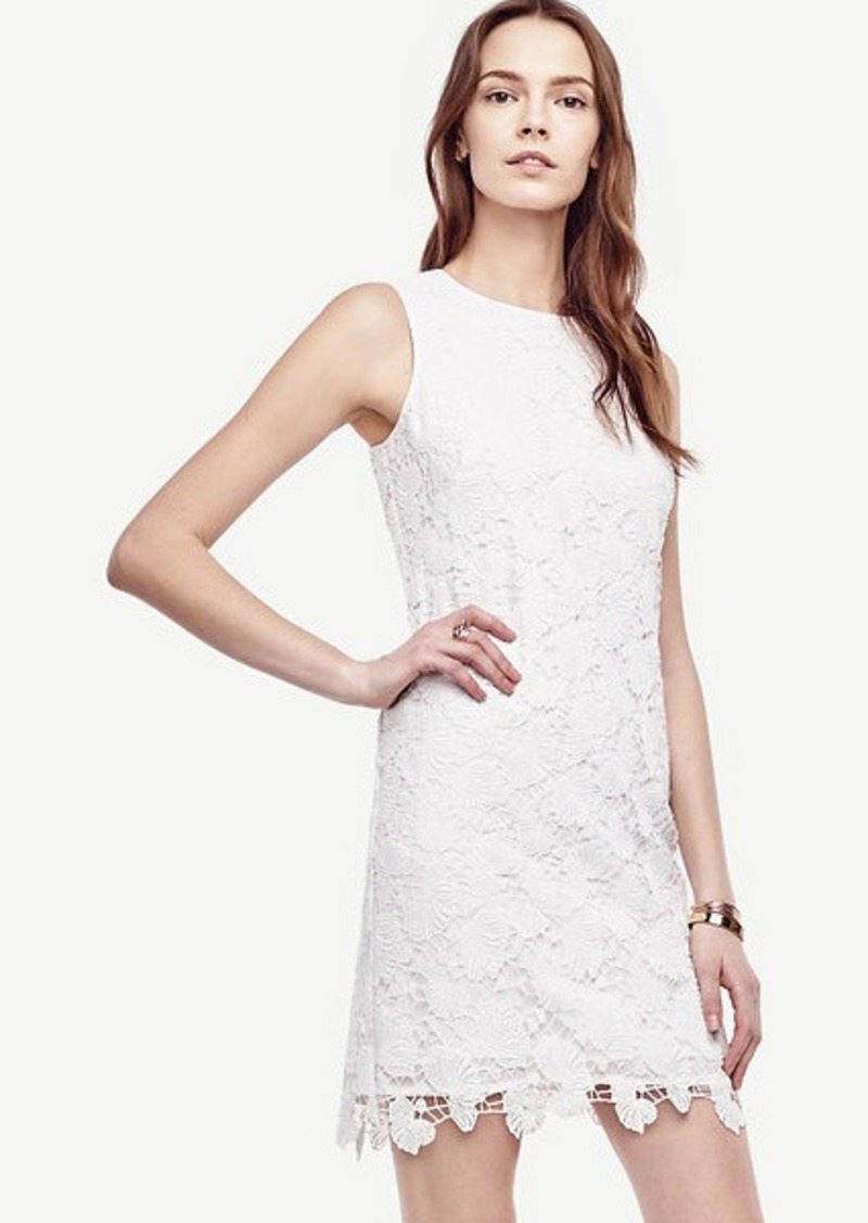 Ann Taylor Petite Floral Lace Shift Dress