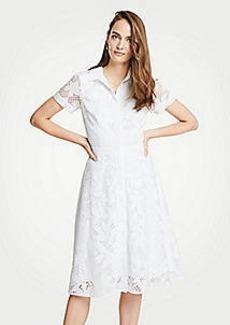 Ann Taylor Petite Floral Lace Shirtdress
