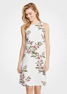 Ann Taylor Petite Floral Sleeveless Shift Dress