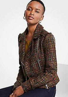 Ann Taylor Petite Fringe Tweed Moto Jacket