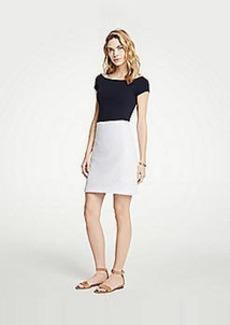 Ann Taylor Petite Lace A-Line Skirt