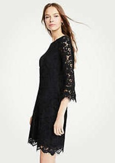 Ann Taylor Petite Lace Fluted Sleeve Flare Dress
