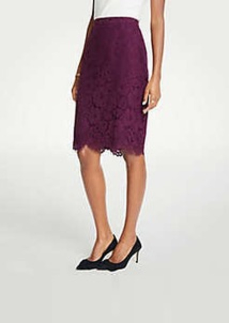 Ann Taylor Petite Lace Pencil Skirt