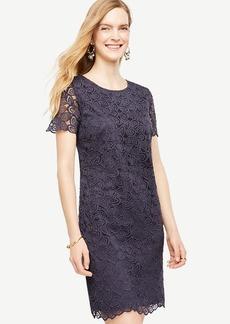 Petite Leaf Lace Shift Dress