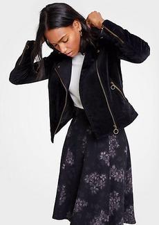 Ann Taylor Petite Velvet Moto Jacket