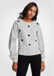 Ann Taylor Polka Dot Sweatshirt