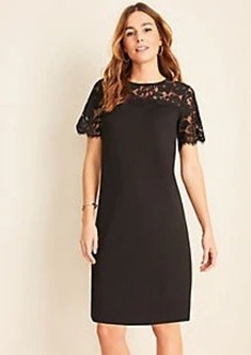 Ann Taylor Scalloped Lace Yoke Shift Dress