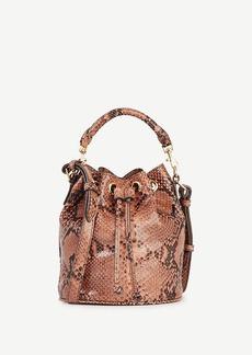 Ann Taylor Snakeskin-Embossed Leather Mini Bucket Bag