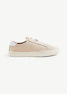 Ann Taylor Soludos Ibiza Classic Sneakers