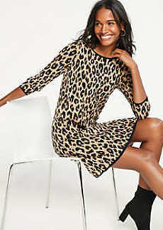 Ann Taylor Spotted Sweater Shift Dress