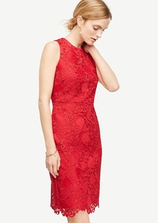 Spring Lace Sheath Dress