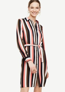 Stripe Piped Shirtdress