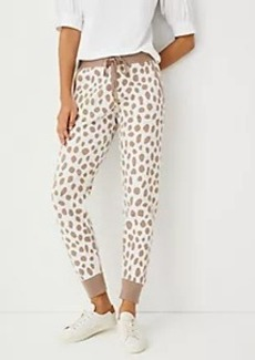 Ann Taylor The Leopard Print Sweater Jogger Pant