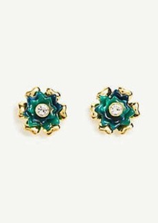Ann Taylor Tortoiseshell Print Flower Stud Earrings