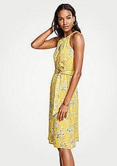 Ann Taylor Tropical Toile Halter Tie Waist Flare Dress