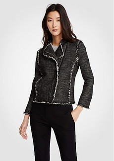 Ann Taylor Tweed Fringe Moto Jacket