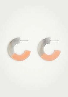 Ann Taylor Two Tone Hoop Earrings