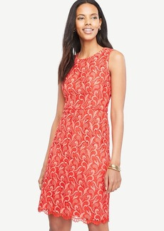 Two Tone Lace Sheath Dress