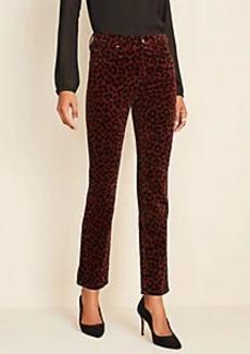 Ann Taylor Leopard Print Velvet Straight Leg Jeans