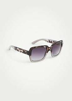 Ann Taylor Winter Square Sunglasses