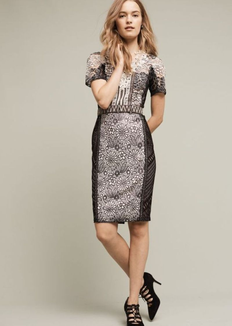 Anthropologie Lace Melange Pencil Dress
