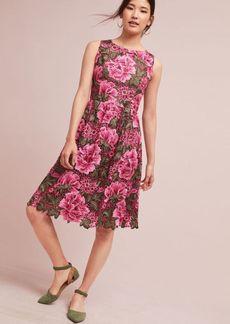 Lalia Lace Dress