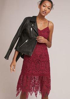 Macie Lace Dress