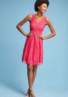Mellie Lace Dress