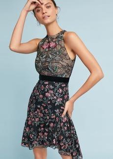 ML Monique Lhuillier Embroidered Lace Dress