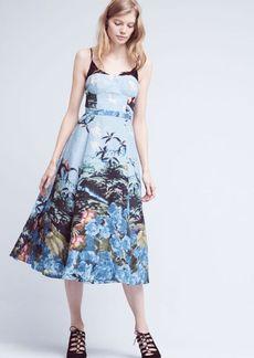 Scenic View Dress