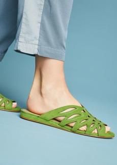 Schutz Muleca Slide Sandals