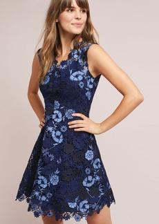 Shoshanna Garden Lace Dress