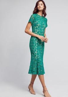 Anthropologie Symphony Lace Midi Dress