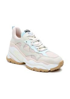Ash Born Sneaker (Women)