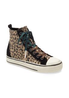 Ash Genial Punk Cheeta High Top Sneaker (Women)