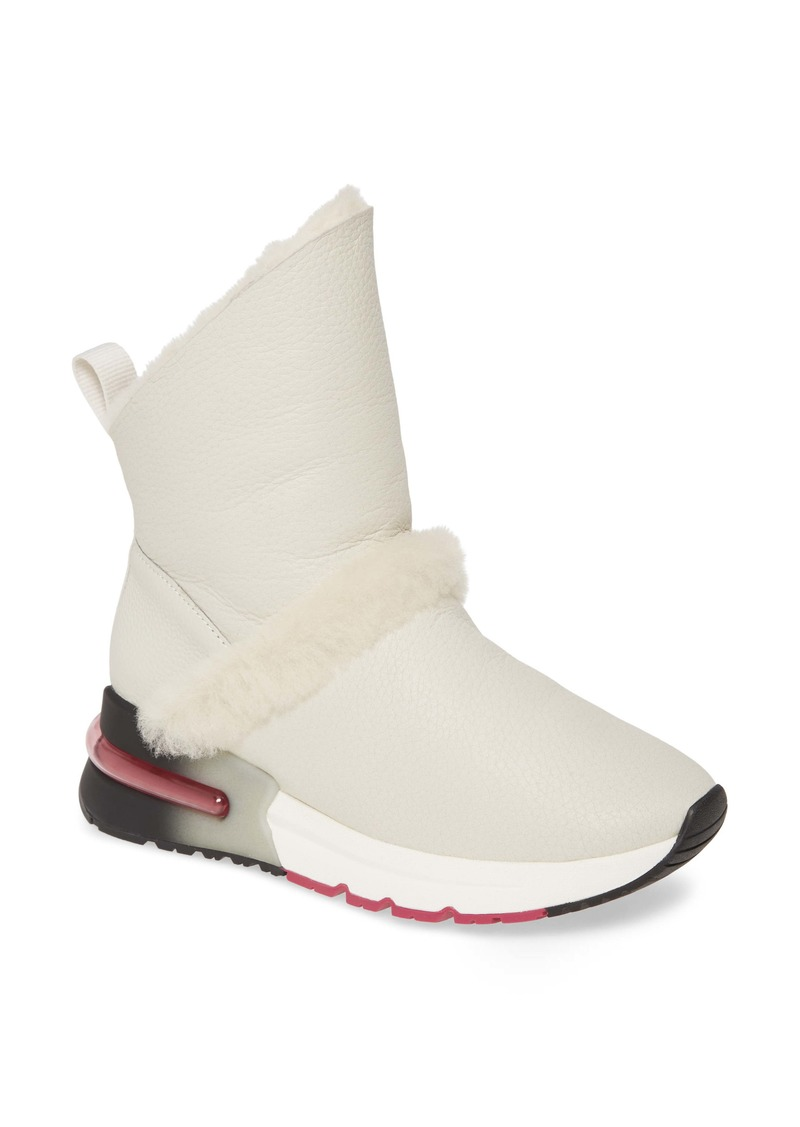 Ash Klima Genuine Shearling Boot (Women)