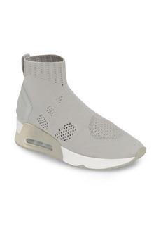 Ash Knit Sneaker Bootie (Women)
