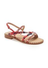 Ash Pasha Studded Sandal (Women)