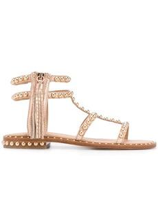 Ash studded gladiator sandals