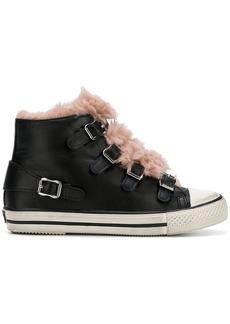 Ash Basket fur sneakers