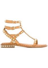 Ash gladiator studded sandals