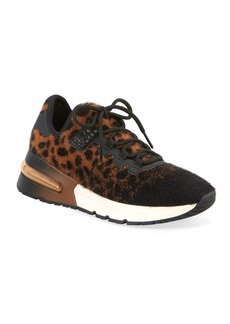 Ash Krush Cheetah-Print Trainer Sneakers