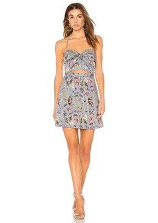 Bailey 44 English Garden Dress